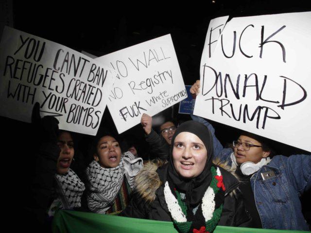Democrats, protesters, muslim ban